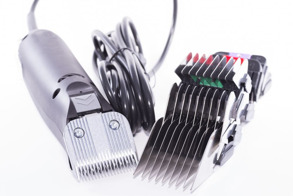 how to sharpen clipper blades at home